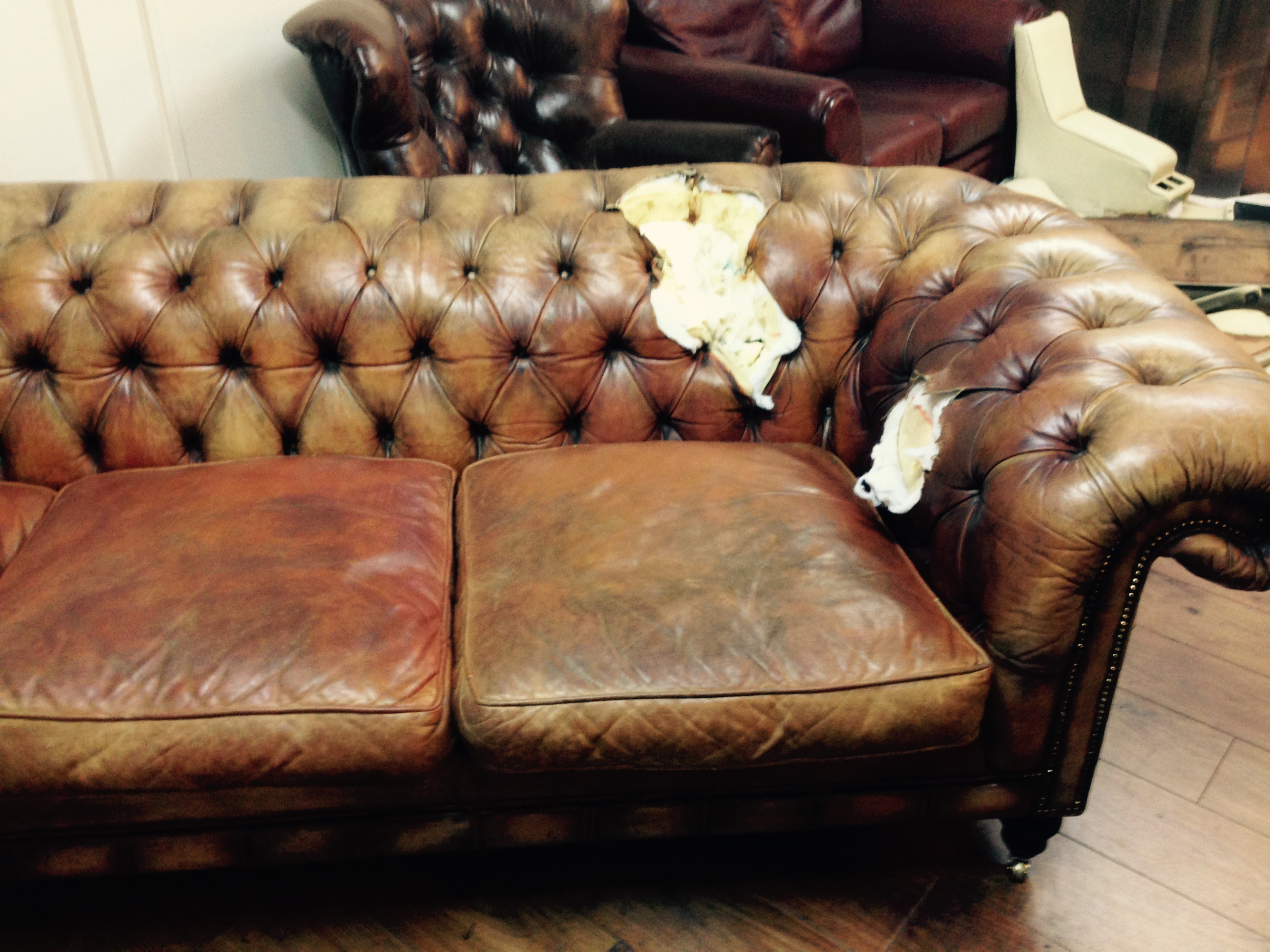Help! Dog ate my Chesterfield!